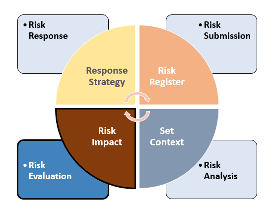 Project risk analysis and management