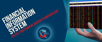 Financial Information Systems